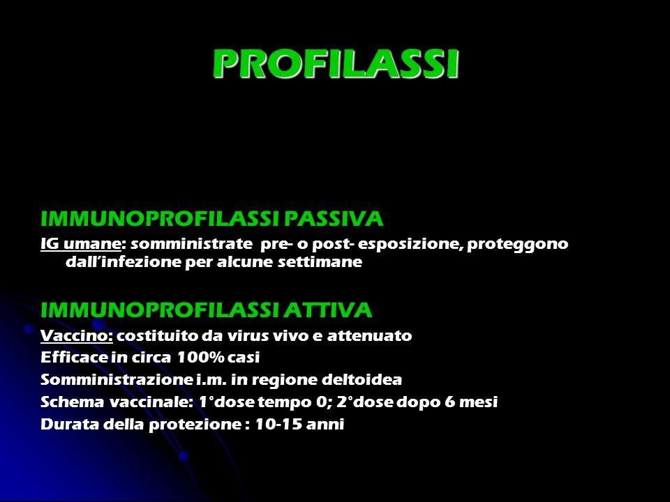 PROFILASSI IMMUNOPROFILASSI PASSIVA IG umane: somministrate pre- o post- esposizione, proteggono dallinfezione per alcune settimane IMMUNOPROFILASSI A