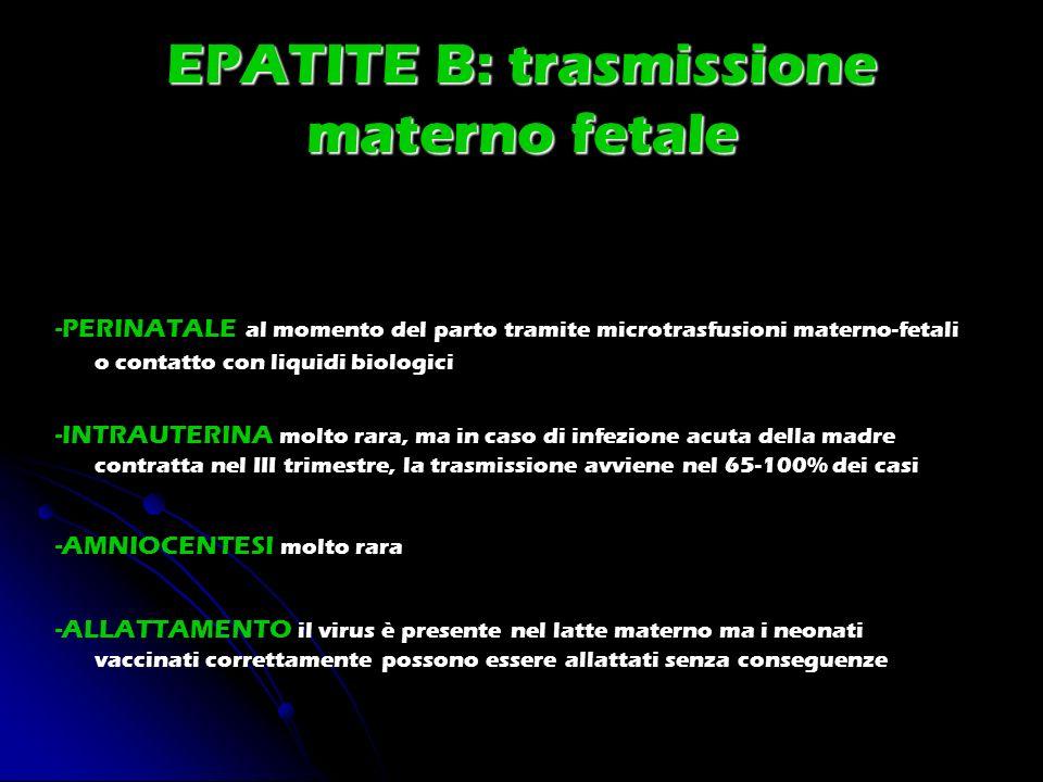 EPATITE B: trasmissione materno fetale -PERINATALE al momento del parto tramite microtrasfusioni materno-fetali o contatto con liquidi biologici -INTR
