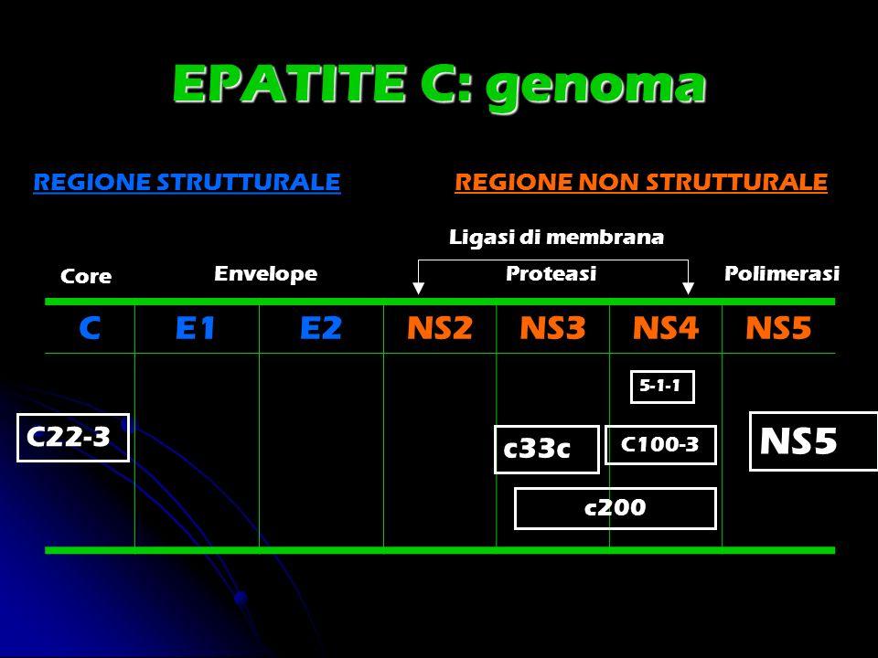 EPATITE C: genoma CE1E2NS2NS3NS4NS5 REGIONE STRUTTURALEREGIONE NON STRUTTURALE Core EnvelopeProteasiPolimerasi Ligasi di membrana C22-3 5-1-1 C100-3 c