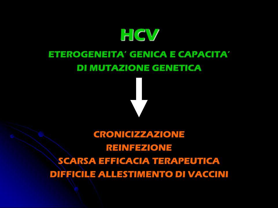 HCV ETEROGENEITA GENICA E CAPACITA DI MUTAZIONE GENETICA CRONICIZZAZIONE REINFEZIONE SCARSA EFFICACIA TERAPEUTICA DIFFICILE ALLESTIMENTO DI VACCINI