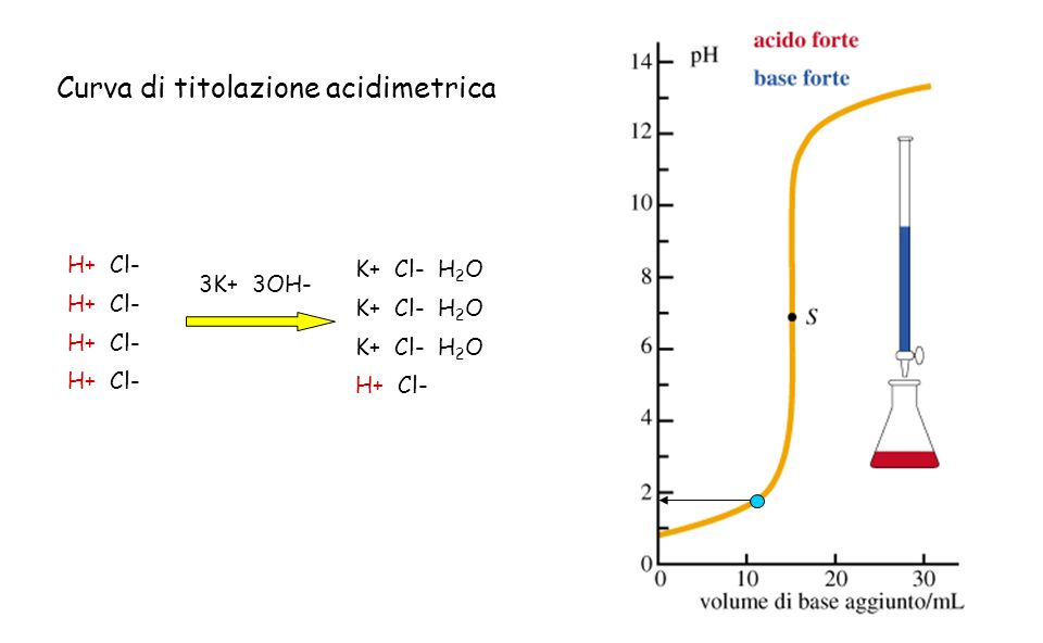 H+ Cl- 3K+ 3OH- K+ Cl- H 2 O H+ Cl- Curva di titolazione acidimetrica