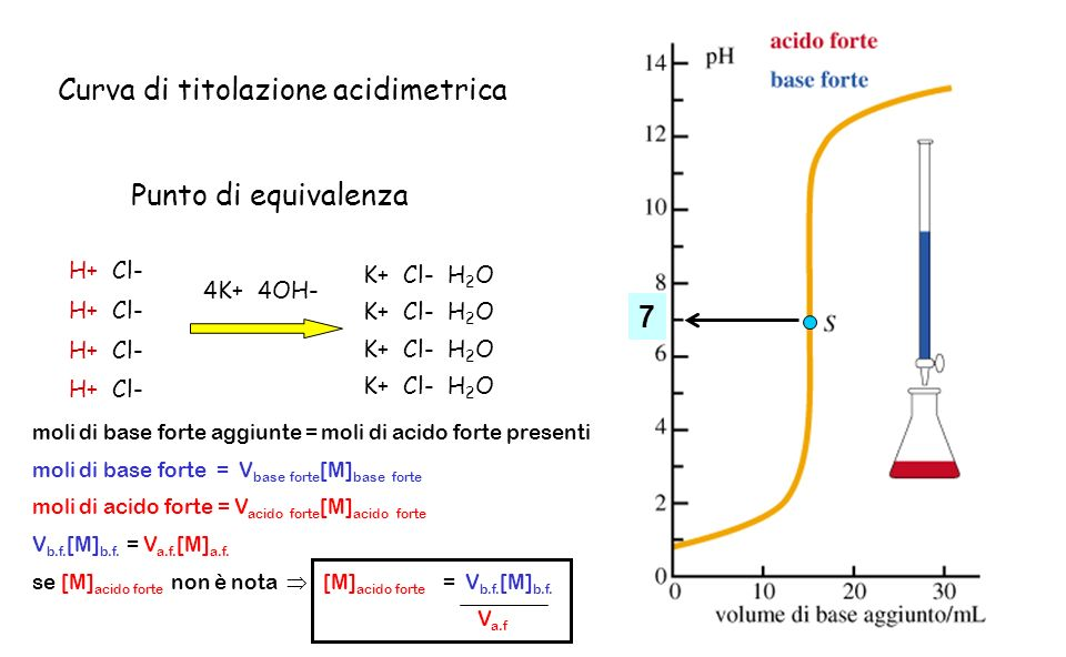 H+ Cl- 4K+ 4OH- K+ Cl- H 2 O Curva di titolazione acidimetrica 7 Punto di equivalenza moli di base forte aggiunte = moli di acido forte presenti moli
