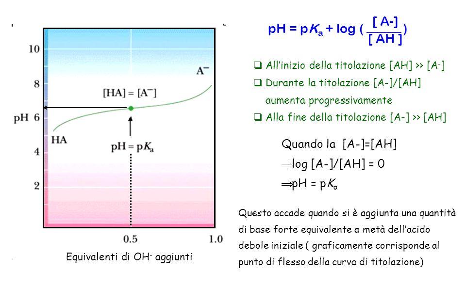 pH = pK a + log ( ) [ A-] [ AH ] Equivalenti di OH - aggiunti Allinizio della titolazione [AH] >> [A - ] Durante la titolazione [A-]/[AH] aumenta prog