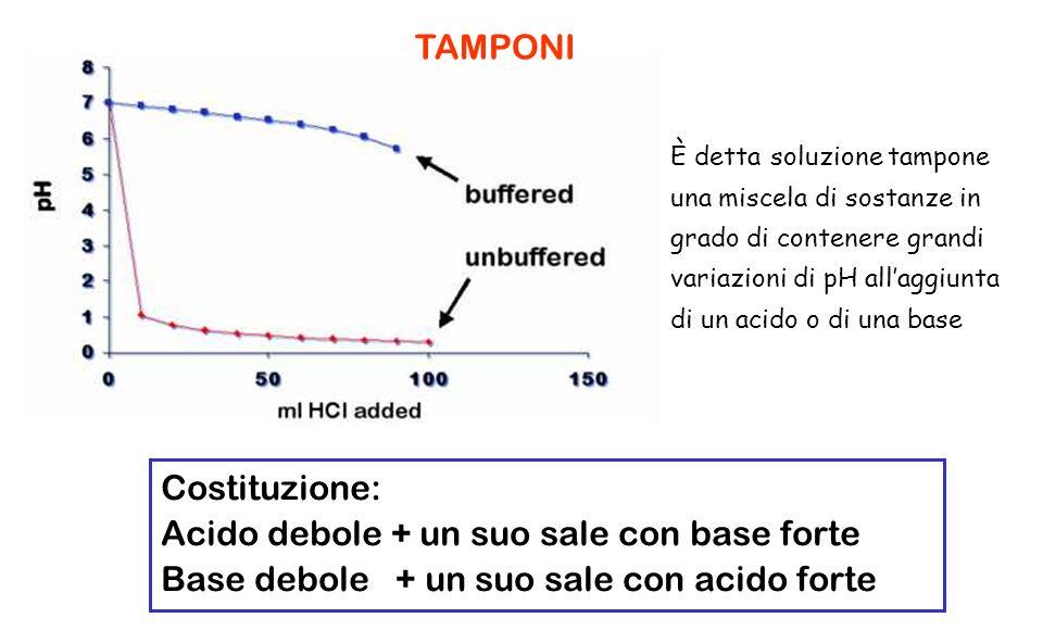 È detta soluzione tampone una miscela di sostanze in grado di contenere grandi variazioni di pH allaggiunta di un acido o di una base Costituzione: Ac
