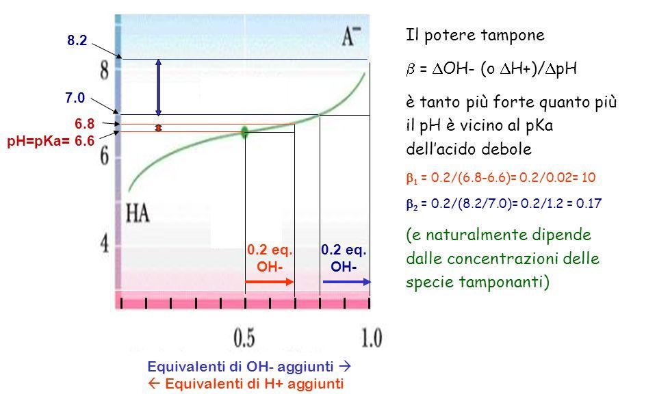Equivalenti di OH- aggiunti Equivalenti di H+ aggiunti Il potere tampone = OH- (o H+)/ pH è tanto più forte quanto più il pH è vicino al pKa dellacido