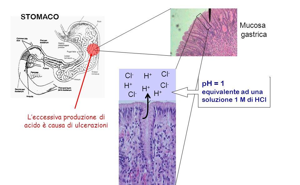Mucosa gastrica STOMACO pH = 1 equivalente ad una soluzione 1 M di HCl H+H+ Cl - H+H+ H+H+ H+H+ Leccessiva produzione di acido è causa di ulcerazioni