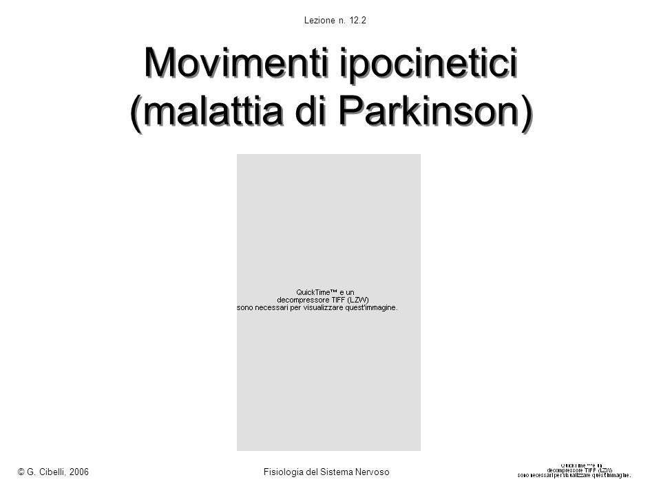 Movimenti ipocinetici (malattia di Parkinson) © G. Cibelli, 2006 Fisiologia del Sistema Nervoso Lezione n. 12.2