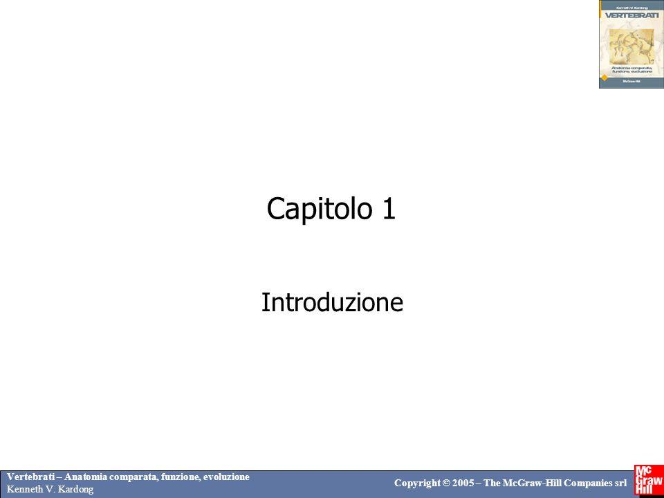 Vertebrati – Anatomia comparata, funzione, evoluzione Kenneth V. Kardong Copyright © 2005 – The McGraw-Hill Companies srl Capitolo 1 Introduzione