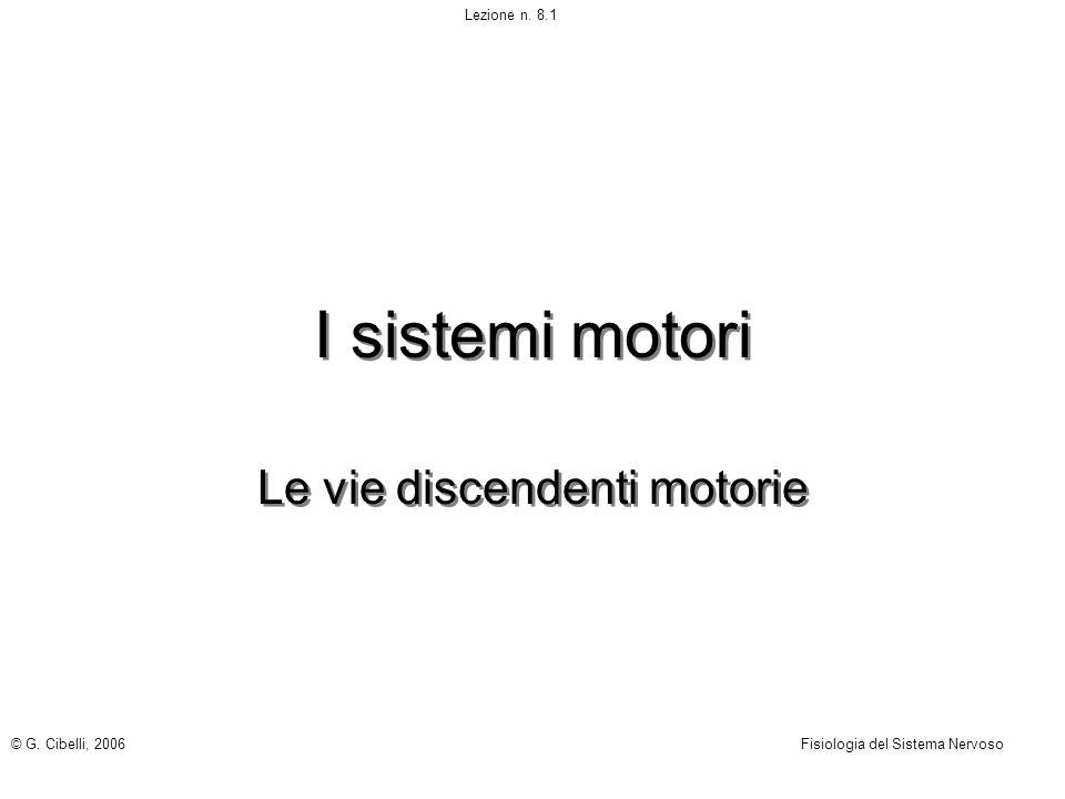 I sistemi motori Le vie discendenti motorie © G. Cibelli, 2006Fisiologia del Sistema Nervoso Lezione n. 8.1