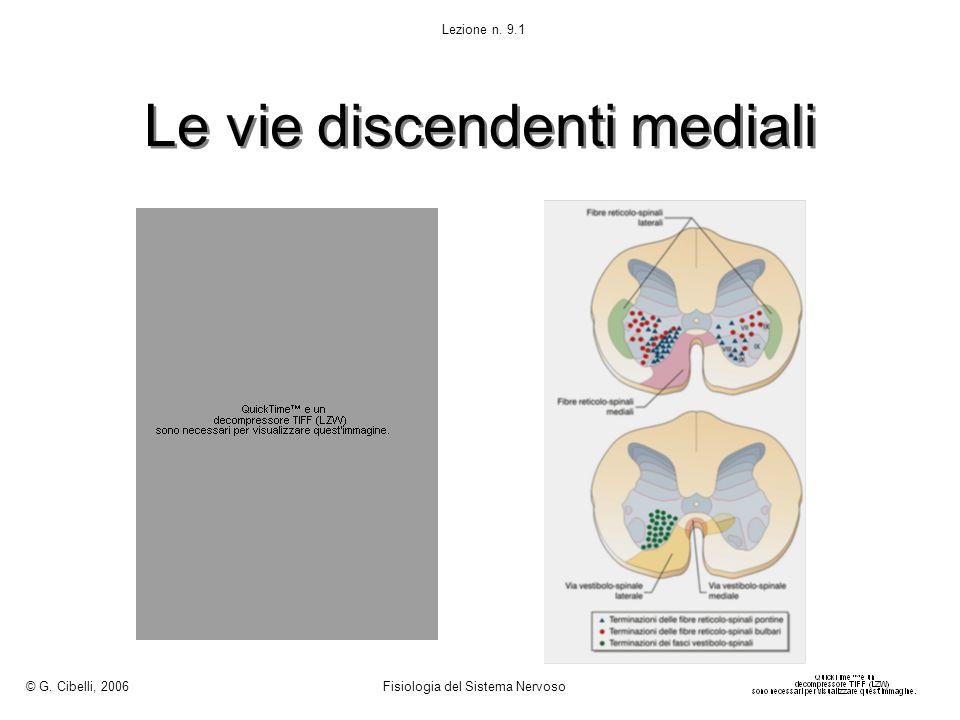 Le vie discendenti mediali © G. Cibelli, 2006 Fisiologia del Sistema Nervoso Lezione n. 9.1