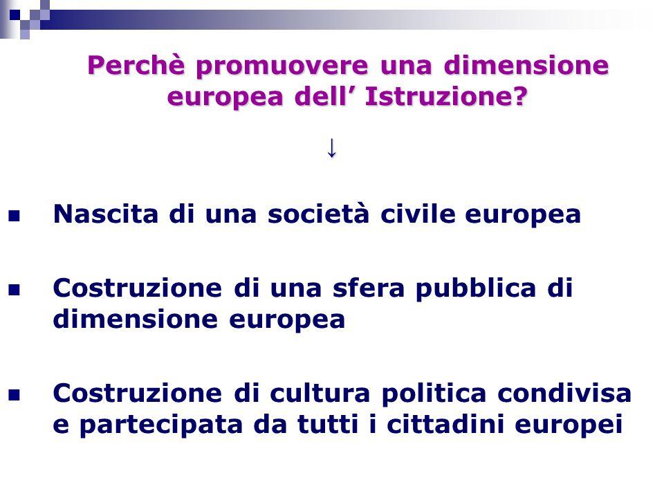Nascita di una società civile europea Costruzione di una sfera pubblica di dimensione europea Costruzione di cultura politica condivisa e partecipata