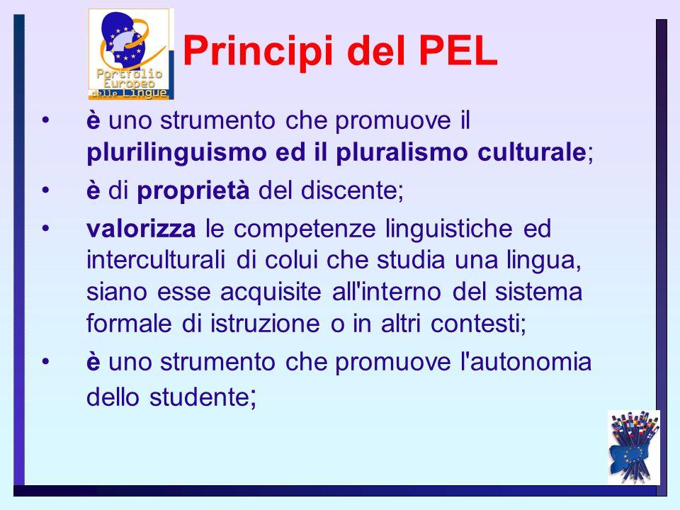 4. lo sviluppo dell'autonomia del discente nel processo di apprendimento; 5. lo sviluppo del plurilinguismo come processo aperto lungo tutto l'arco de