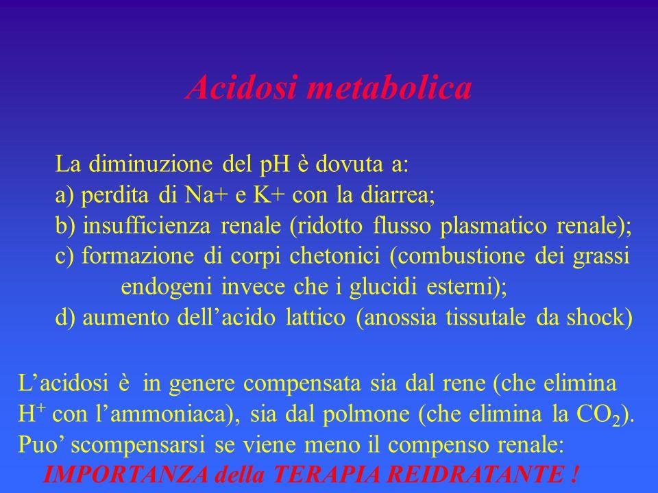 Acidosi metabolica La diminuzione del pH è dovuta a: a) perdita di Na+ e K+ con la diarrea; b) insufficienza renale (ridotto flusso plasmatico renale); c) formazione di corpi chetonici (combustione dei grassi endogeni invece che i glucidi esterni); d) aumento dellacido lattico (anossia tissutale da shock) Lacidosi è in genere compensata sia dal rene (che elimina H + con lammoniaca), sia dal polmone (che elimina la CO 2 ).