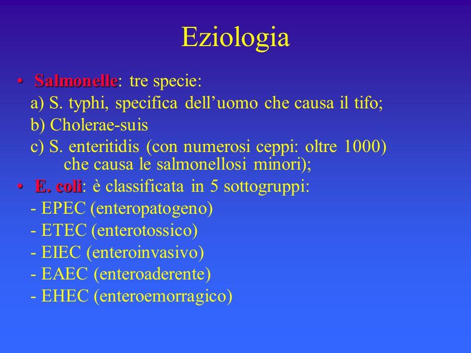 Eziologia SalmonelleSalmonelle: tre specie: a) S. typhi, specifica delluomo che causa il tifo; b) Cholerae-suis c) S. enteritidis (con numerosi ceppi: