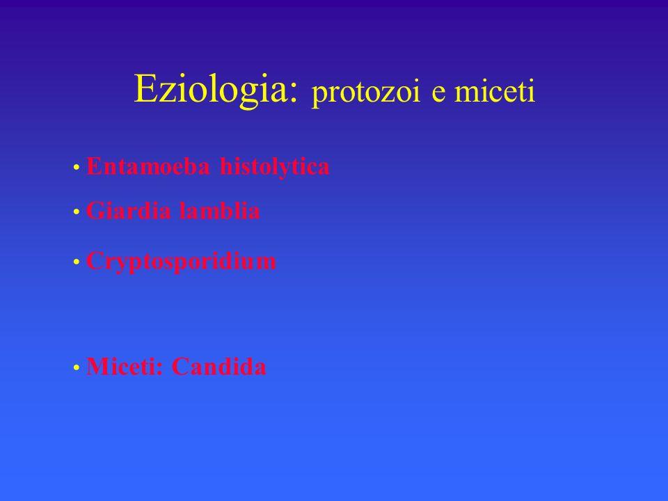 Eziologia: protozoi e miceti Entamoeba histolytica Giardia lamblia Cryptosporidium Miceti: Candida