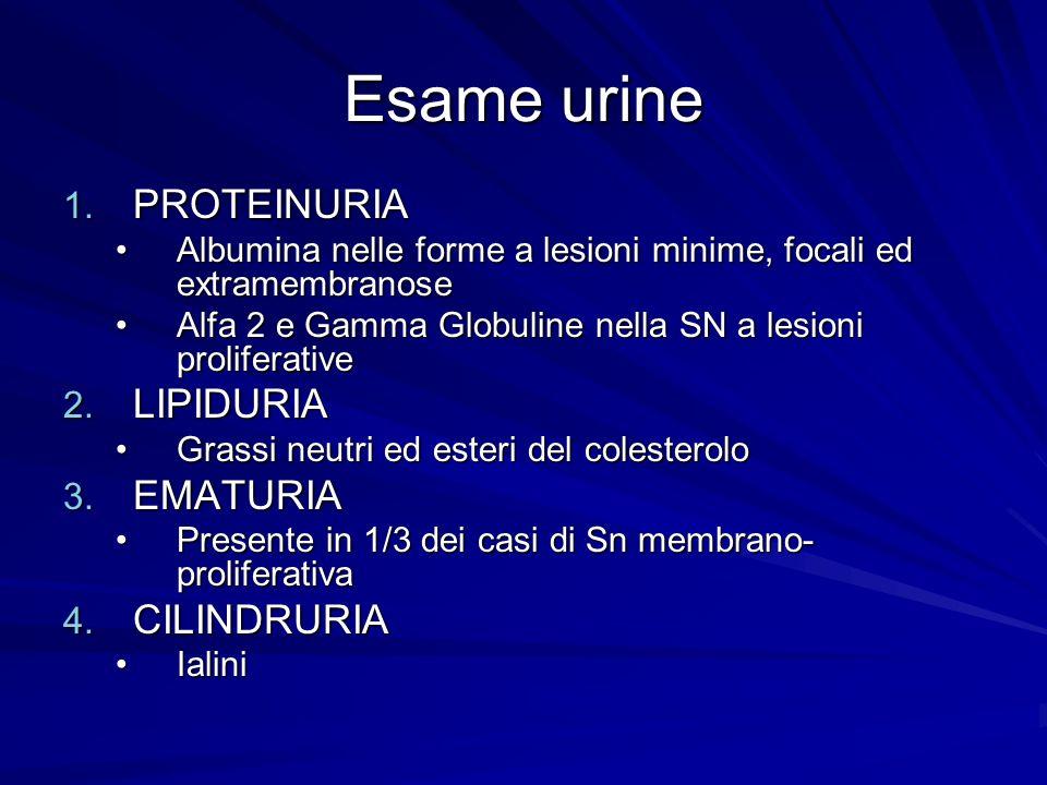 Esame urine 1. PROTEINURIA Albumina nelle forme a lesioni minime, focali ed extramembranoseAlbumina nelle forme a lesioni minime, focali ed extramembr