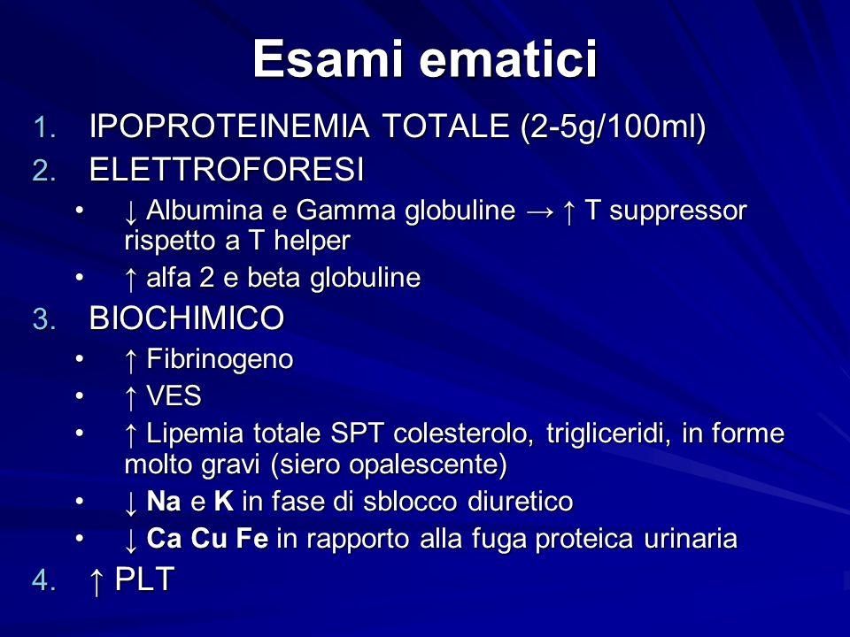 Esami ematici 1. IPOPROTEINEMIA TOTALE (2-5g/100ml) 2. ELETTROFORESI Albumina e Gamma globuline T suppressor rispetto a T helper Albumina e Gamma glob