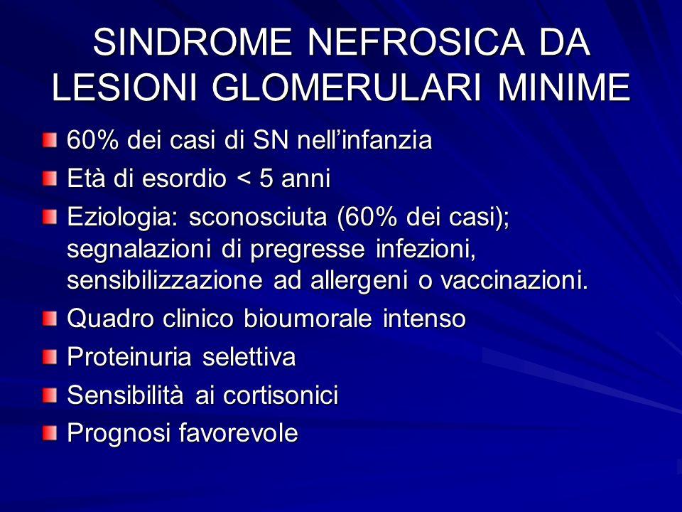 SINDROME NEFROSICA DA LESIONI GLOMERULARI MINIME 60% dei casi di SN nellinfanzia Età di esordio < 5 anni Eziologia: sconosciuta (60% dei casi); segnal