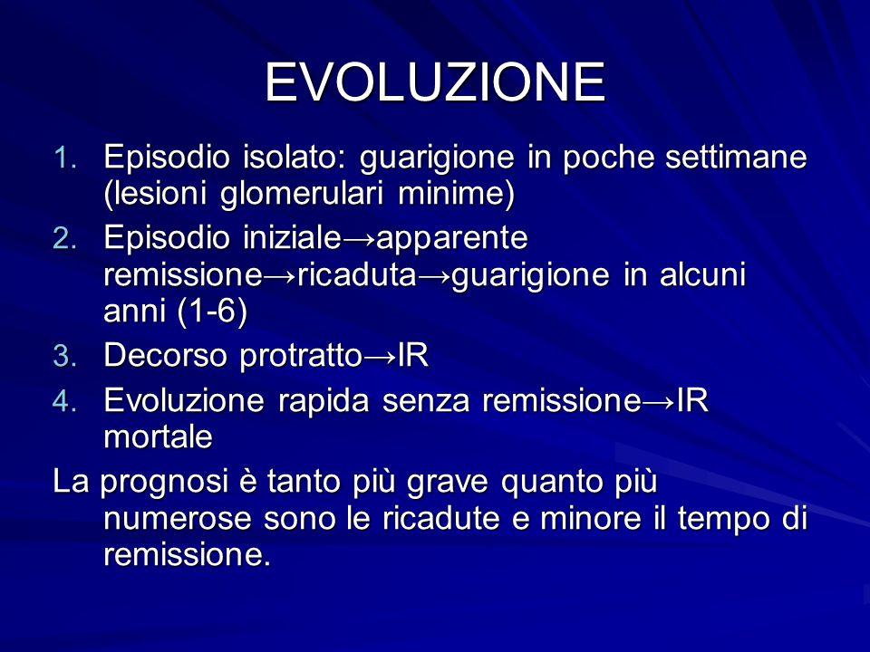 EVOLUZIONE 1. Episodio isolato: guarigione in poche settimane (lesioni glomerulari minime) 2. Episodio inizialeapparente remissionericadutaguarigione
