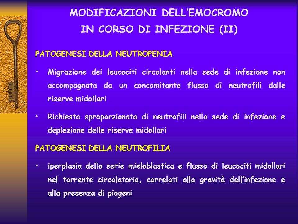 MODIFICAZIONI DELLEMOCROMO IN CORSO DI INFEZIONE (II) PATOGENESI DELLA NEUTROPENIA Migrazione dei leucociti circolanti nella sede di infezione non acc