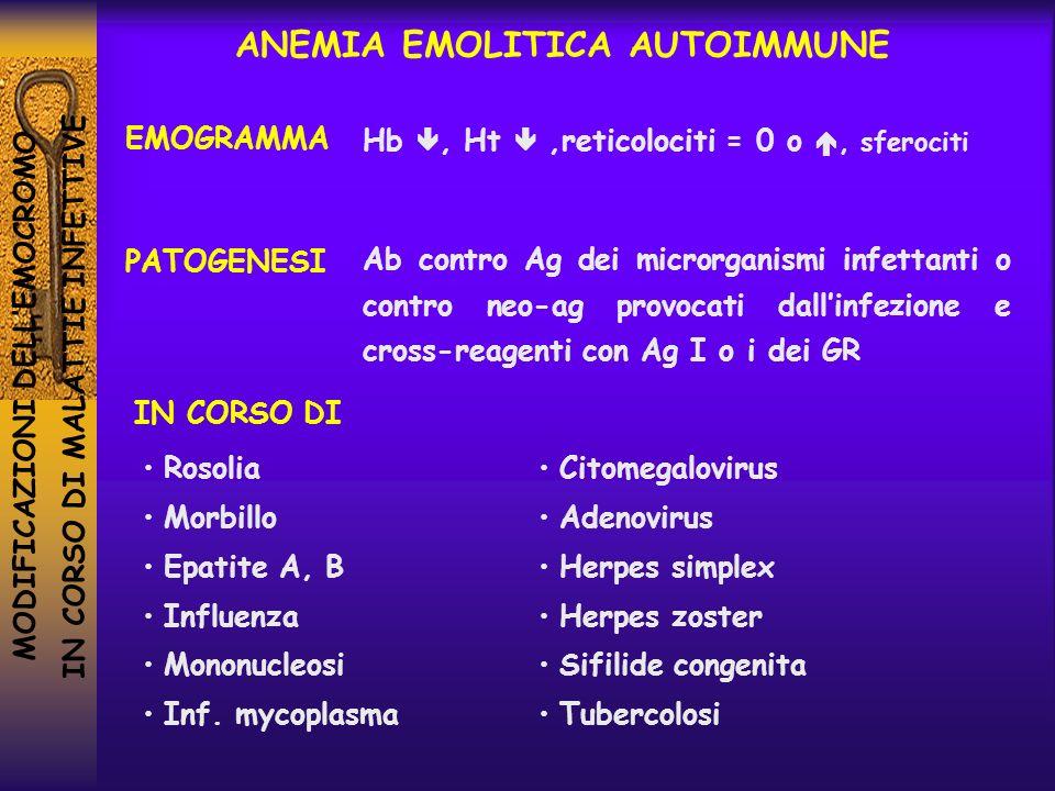 MODIFICAZIONI DELLEMOCROMO IN CORSO DI MALATTIE INFETTIVE Hb, Ht,reticolociti = 0 o, sferociti ANEMIA EMOLITICA AUTOIMMUNE EMOGRAMMA PATOGENESI IN COR