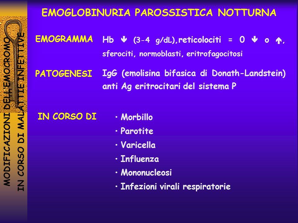 MODIFICAZIONI DELLEMOCROMO IN CORSO DI MALATTIE INFETTIVE Hb (3-4 g/dL),reticolociti = 0 o, sferociti, normoblasti, eritrofagocitosi EMOGLOBINURIA PAR