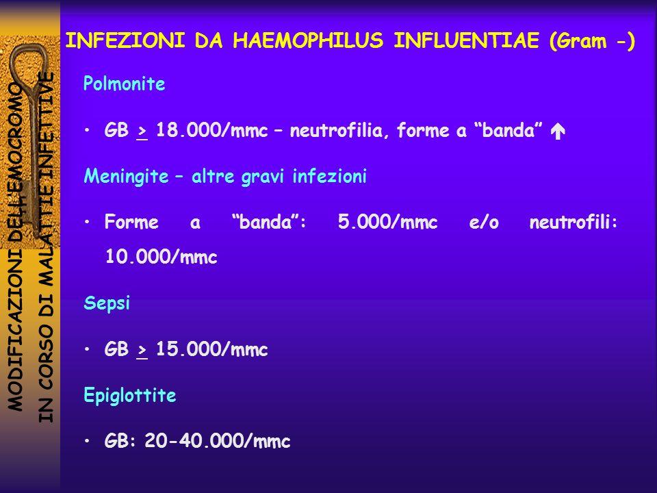 MODIFICAZIONI DELLEMOCROMO IN CORSO DI MALATTIE INFETTIVE INFEZIONI DA HAEMOPHILUS INFLUENTIAE (Gram -) Polmonite GB > 18.000/mmc – neutrofilia, forme