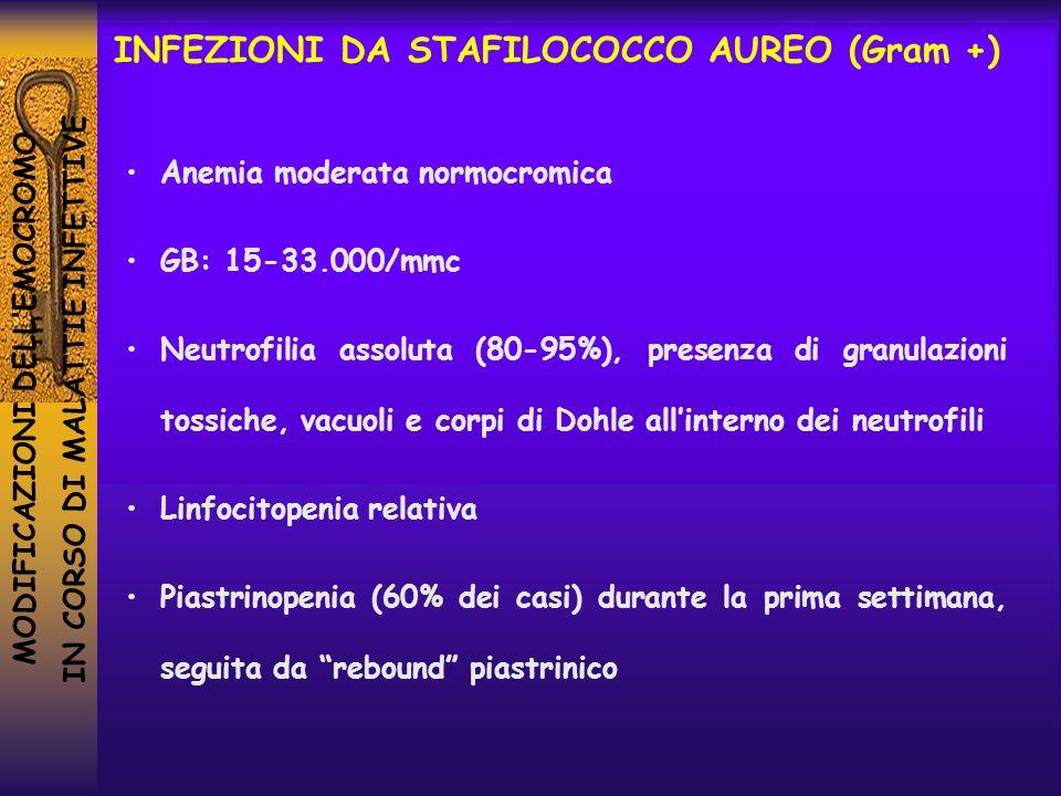 MODIFICAZIONI DELLEMOCROMO IN CORSO DI MALATTIE INFETTIVE INFEZIONI DA STAFILOCOCCO AUREO (Gram +) Anemia moderata normocromica GB: 15-33.000/mmc Neut