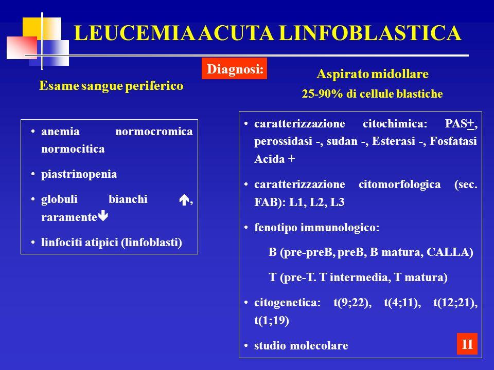 LEUCEMIA ACUTA LINFOBLASTICA Esame sangue periferico Diagnosi: II anemia normocromica normocitica piastrinopenia globuli bianchi, raramente linfociti