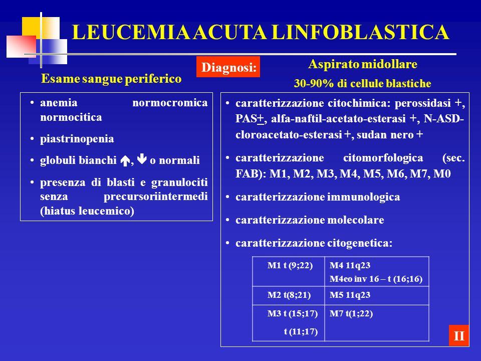 LEUCEMIA ACUTA LINFOBLASTICA Esame sangue periferico Diagnosi: II anemia normocromica normocitica piastrinopenia globuli bianchi, o normali presenza d