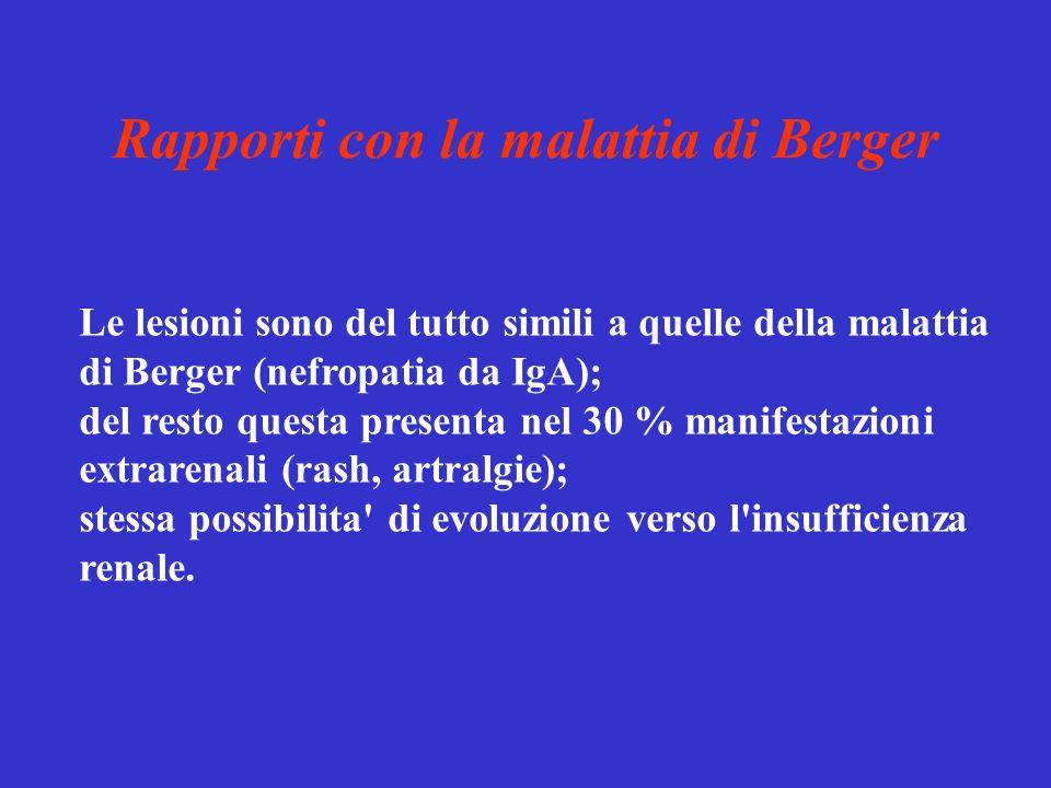 Rapporti con la malattia di Berger Le lesioni sono del tutto simili a quelle della malattia di Berger (nefropatia da IgA); del resto questa presenta n