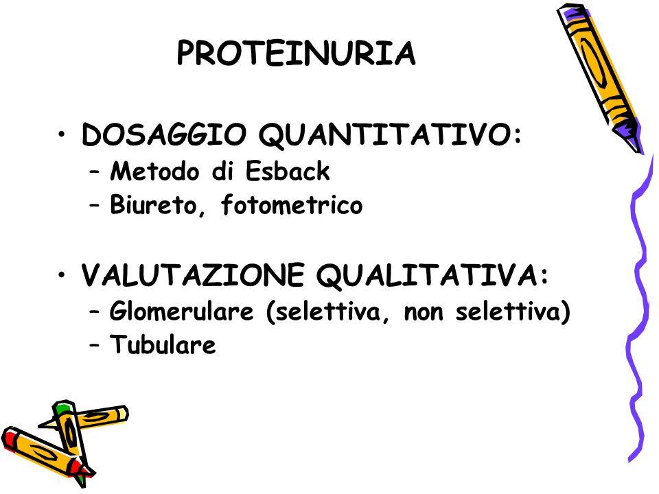 PROTEINURIA DOSAGGIO QUANTITATIVO: –Metodo di Esback –Biureto, fotometrico VALUTAZIONE QUALITATIVA: –Glomerulare (selettiva, non selettiva) –Tubulare