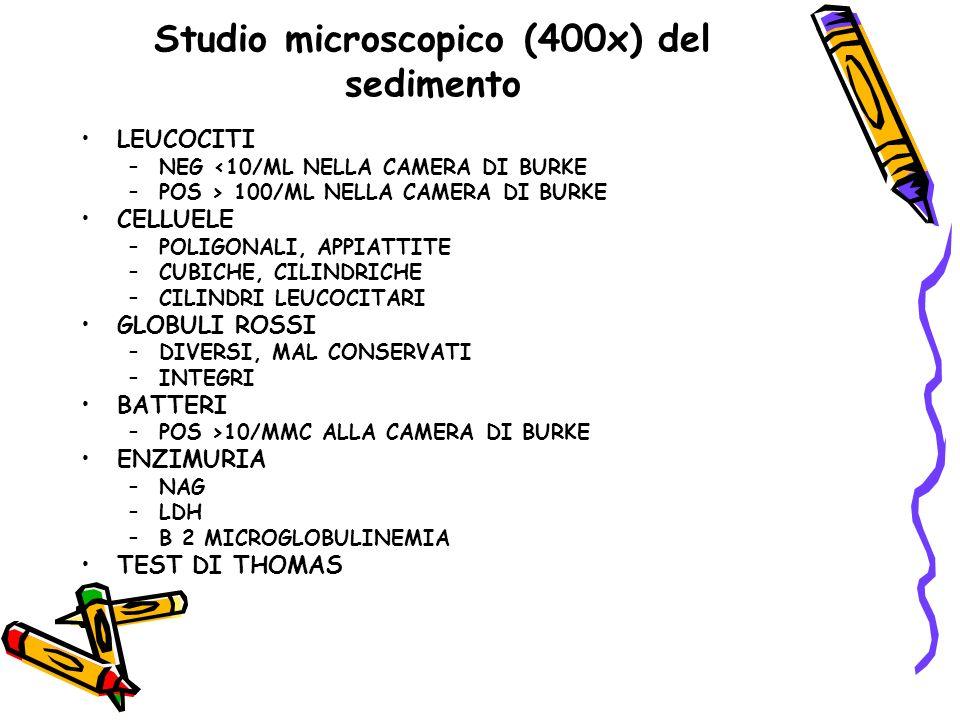 Studio microscopico (400x) del sedimento LEUCOCITI –NEG <10/ML NELLA CAMERA DI BURKE –POS > 100/ML NELLA CAMERA DI BURKE CELLUELE –POLIGONALI, APPIATT