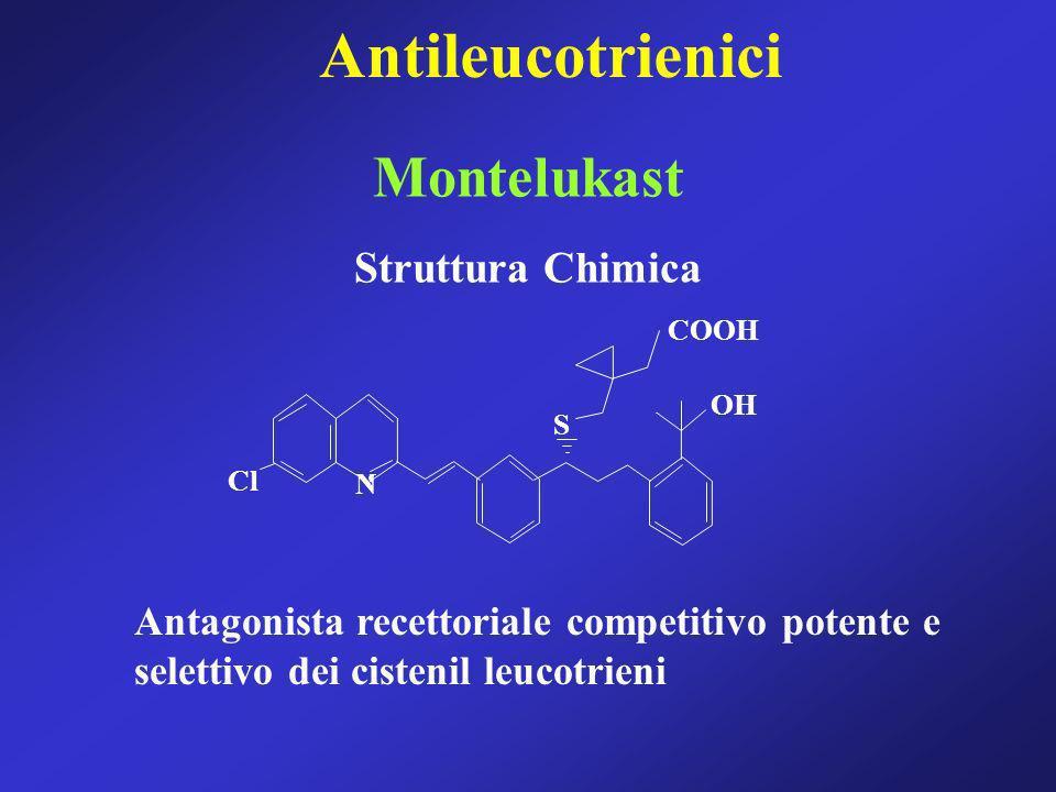 Montelukast Struttura Chimica COOH OH S Cl N Antagonista recettoriale competitivo potente e selettivo dei cistenil leucotrieni Antileucotrienici