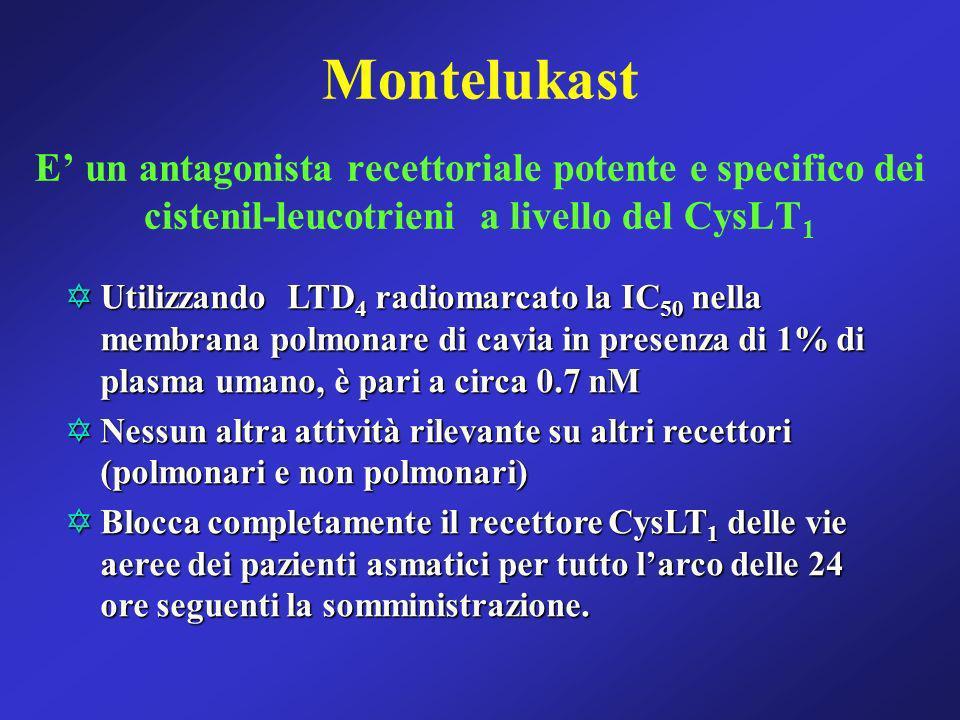 Montelukast E un antagonista recettoriale potente e specifico dei cistenil-leucotrieni a livello del CysLT 1 YUtilizzando LTD 4 radiomarcato la IC 50