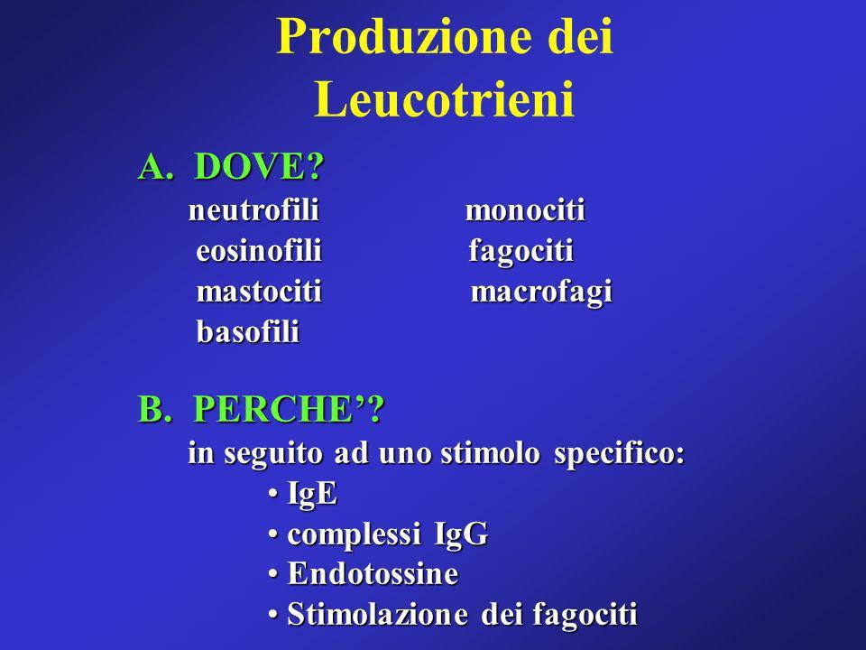 Produzione dei Leucotrieni A. DOVE? neutrofili monociti neutrofili monociti eosinofili fagociti eosinofili fagociti mastociti macrofagi mastociti macr