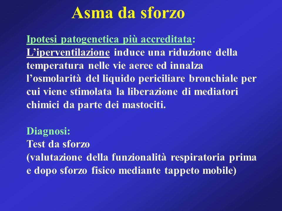 Asma da sforzo Ipotesi patogenetica più accreditata: Liperventilazione induce una riduzione della temperatura nelle vie aeree ed innalza losmolarità d
