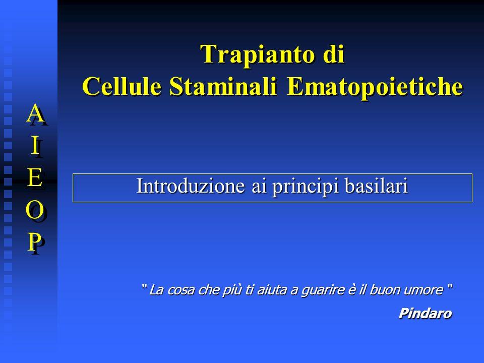 Trapianto di Cellule Staminali Ematopoietiche AIEOPAIEOP AIEOPAIEOP Introduzione ai principi basilari La cosa che più ti aiuta a guarire è il buon umo