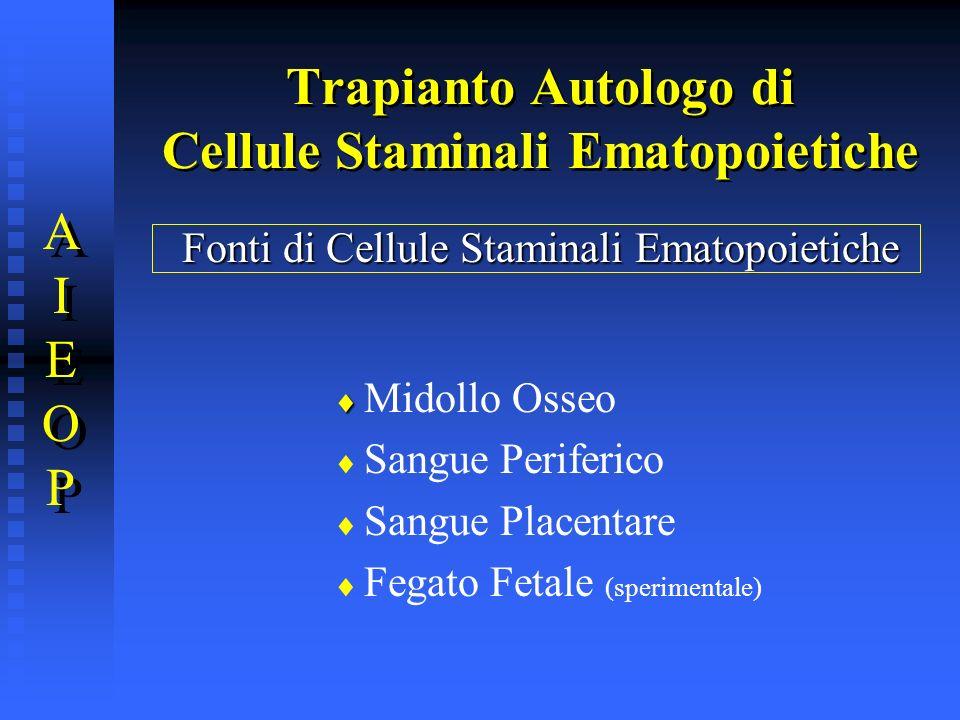 Trapianto Autologo di Cellule Staminali Ematopoietiche AIEOPAIEOP AIEOPAIEOP Fonti di Cellule Staminali Ematopoietiche Midollo Osseo Sangue Periferico