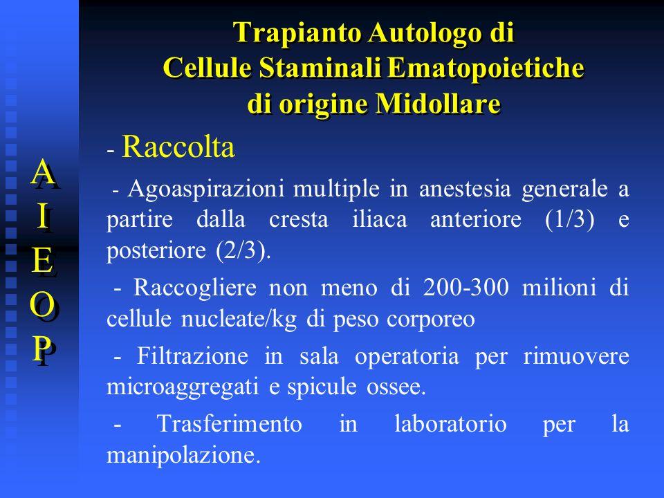 Trapianto Autologo di Cellule Staminali Ematopoietiche di origine Midollare AIEOPAIEOP AIEOPAIEOP - Raccolta - Agoaspirazioni multiple in anestesia ge