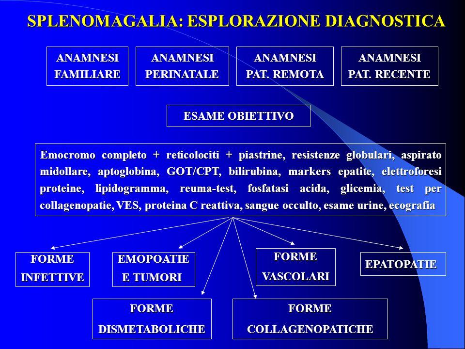 SPLENOMAGALIA: ESPLORAZIONE DIAGNOSTICA Emocromo completo + reticolociti + piastrine, resistenze globulari, aspirato midollare, aptoglobina, GOT/CPT,
