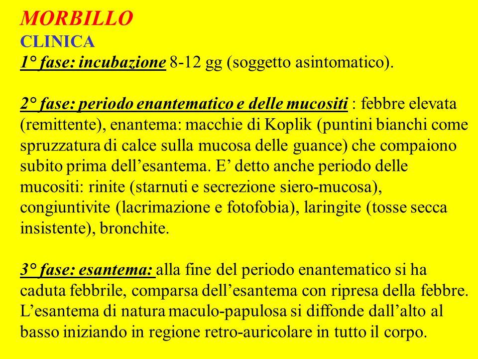 MORBILLO CLINICA 1° fase: incubazione 8-12 gg (soggetto asintomatico). 2° fase: periodo enantematico e delle mucositi : febbre elevata (remittente), e