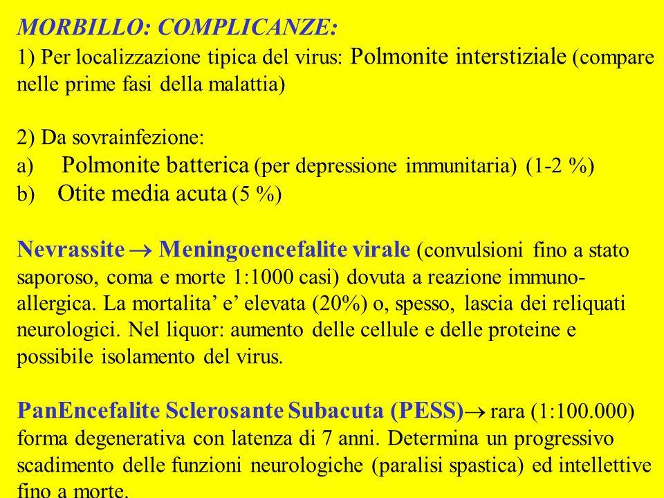 MORBILLO: COMPLICANZE: 1) Per localizzazione tipica del virus: Polmonite interstiziale (compare nelle prime fasi della malattia) 2) Da sovrainfezione:
