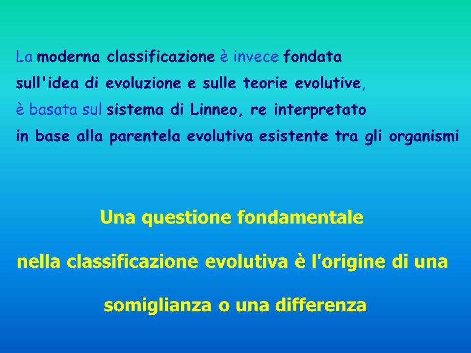 La moderna classificazione è invece fondata sull idea di evoluzione e sulle teorie evolutive, è basata sul sistema di Linneo, re interpretato in base alla parentela evolutiva esistente tra gli organismi Una questione fondamentale nella classificazione evolutiva è l origine di una somiglianza o una differenza