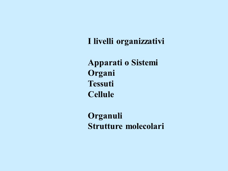 I livelli organizzativi Apparati o Sistemi Organi Tessuti Cellule Organuli Strutture molecolari