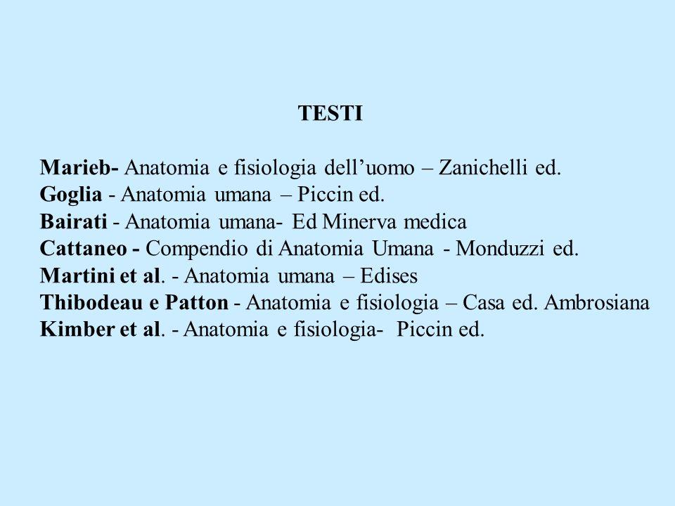 TESTI Marieb- Anatomia e fisiologia delluomo – Zanichelli ed. Goglia - Anatomia umana – Piccin ed. Bairati - Anatomia umana- Ed Minerva medica Cattane