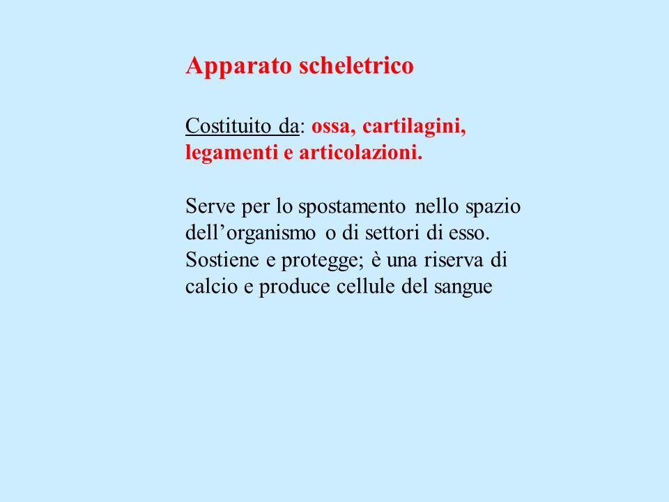 Apparato scheletrico Costituito da: ossa, cartilagini, legamenti e articolazioni. Serve per lo spostamento nello spazio dellorganismo o di settori di