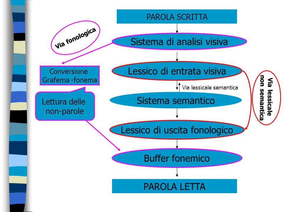 PAROLA SCRITTA Sistema di analisi visiva Lessico di entrata visiva Sistema semantico Lessico di uscita fonologico Buffer fonemico PAROLA LETTA Convers