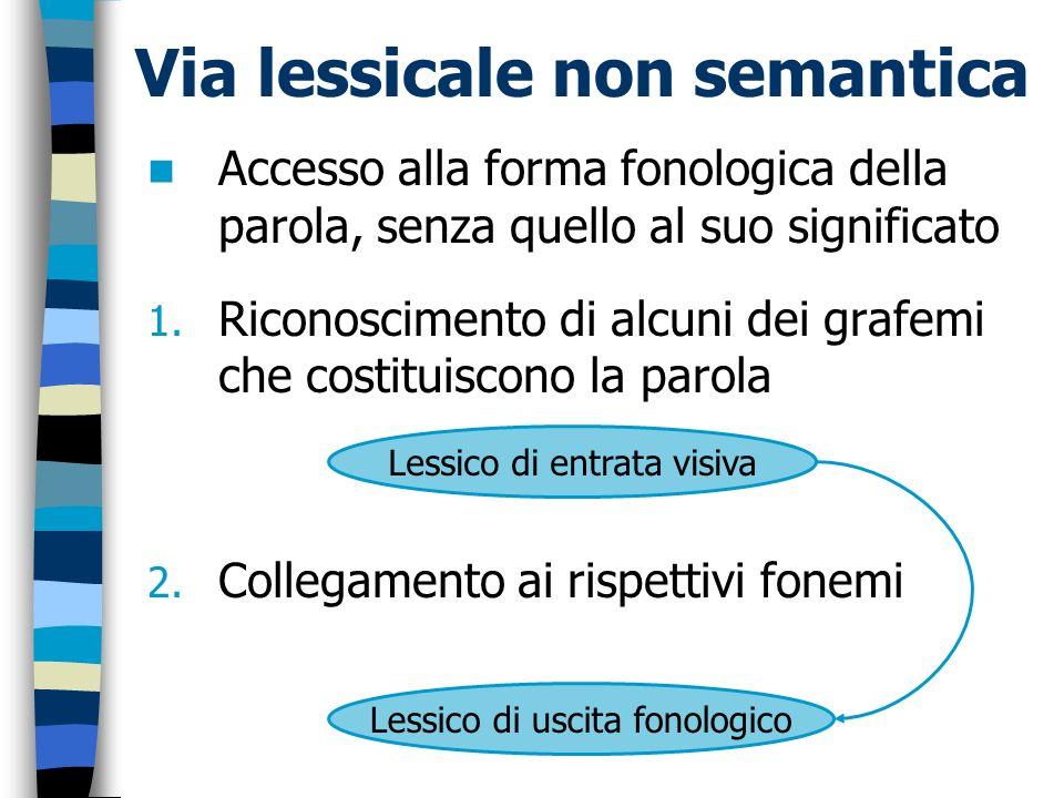 Via lessicale non semantica Accesso alla forma fonologica della parola, senza quello al suo significato 1. Riconoscimento di alcuni dei grafemi che co
