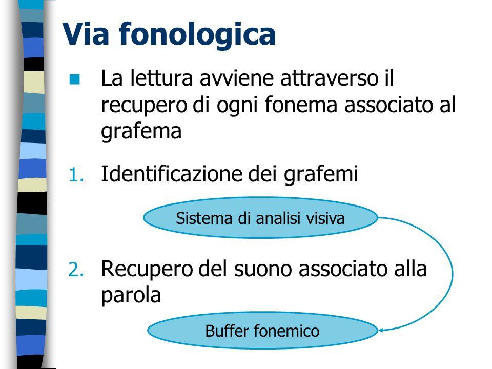 Via fonologica La lettura avviene attraverso il recupero di ogni fonema associato al grafema 1. Identificazione dei grafemi 2. Recupero del suono asso